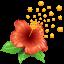 Цветок с пыльцой