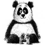Мишка Панда фотография